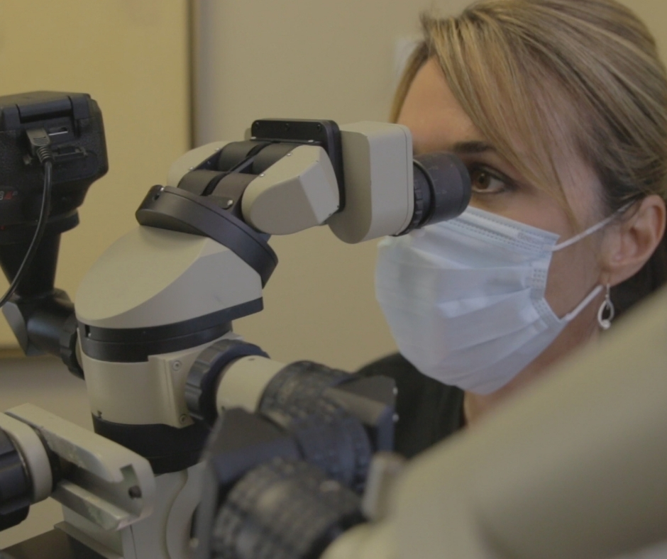 Dr. Susan Wood looking in microscope