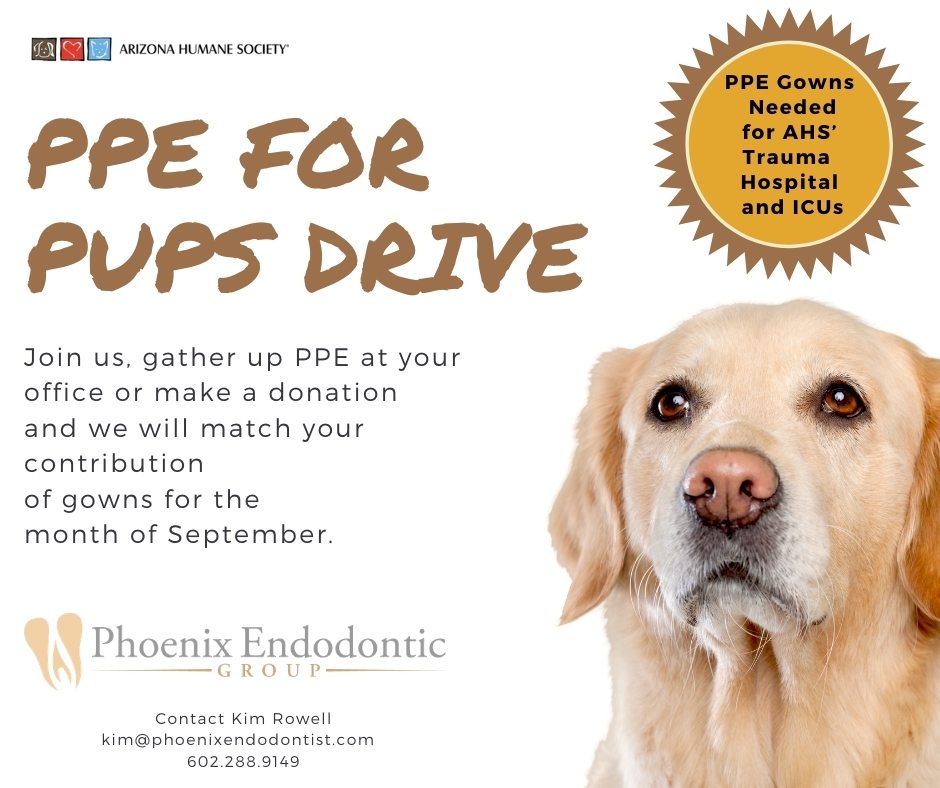 PPE for Pups Drive